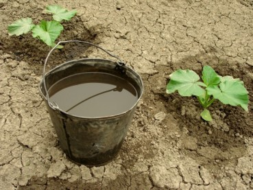 pail-of-dirty-water-579x435.jpg